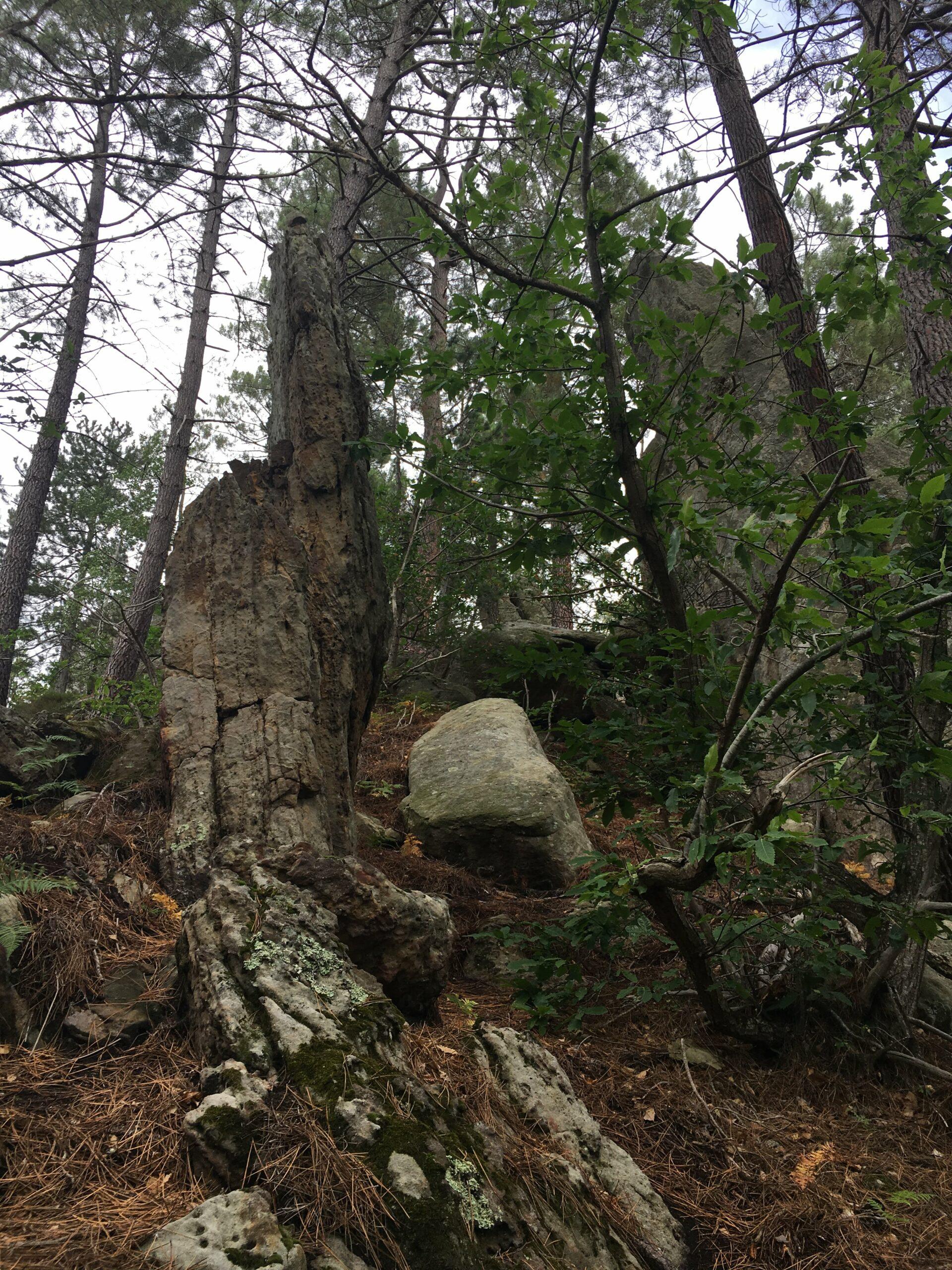 Mégalithes dans l'Aude